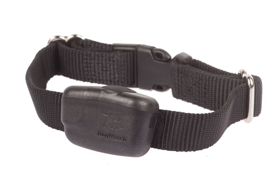 Picture of Halsbånd DogWatch® PT4 R7 Mini